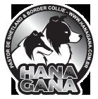 Hanagana